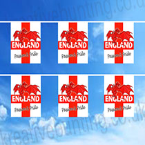 Uniquely Designed by our design department - St. George Dragon Bunting - support England in style
